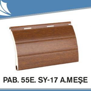 pab-55e-sy-17