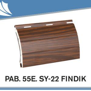 pab-55e-sy-22