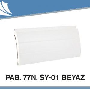 pab-77n-sy-01
