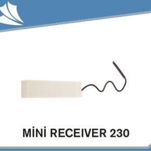mini-receiver